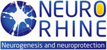 offsc2011-neurorhine