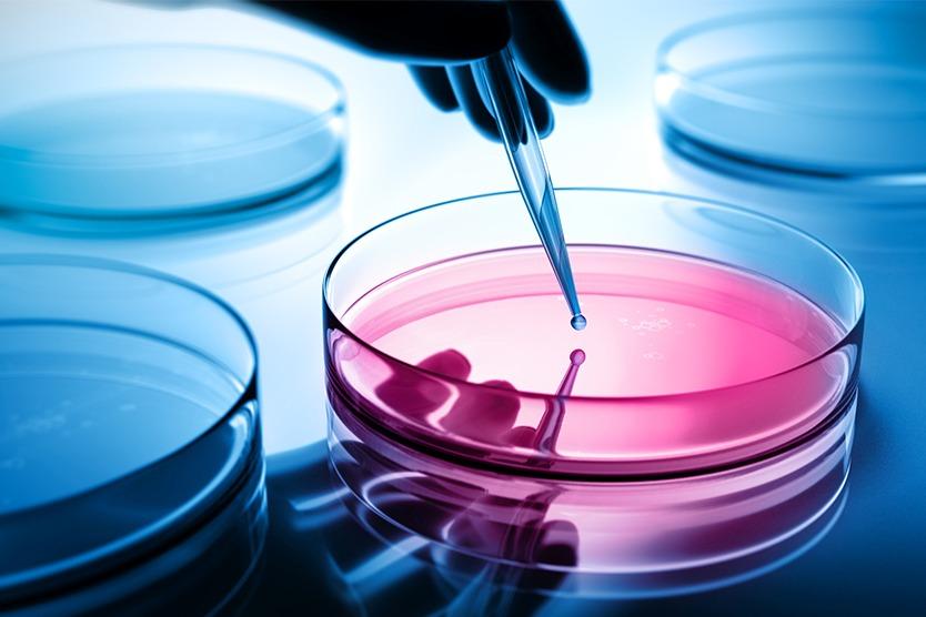 biotechnologie.jpg